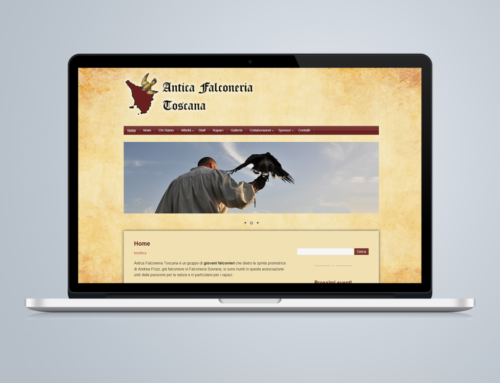 Restyling sito internet falconieri