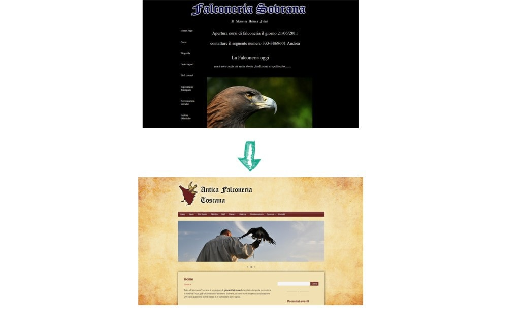 restyling sito falconeria